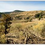 farwell canyon, central bc/canada �monika petersen photography